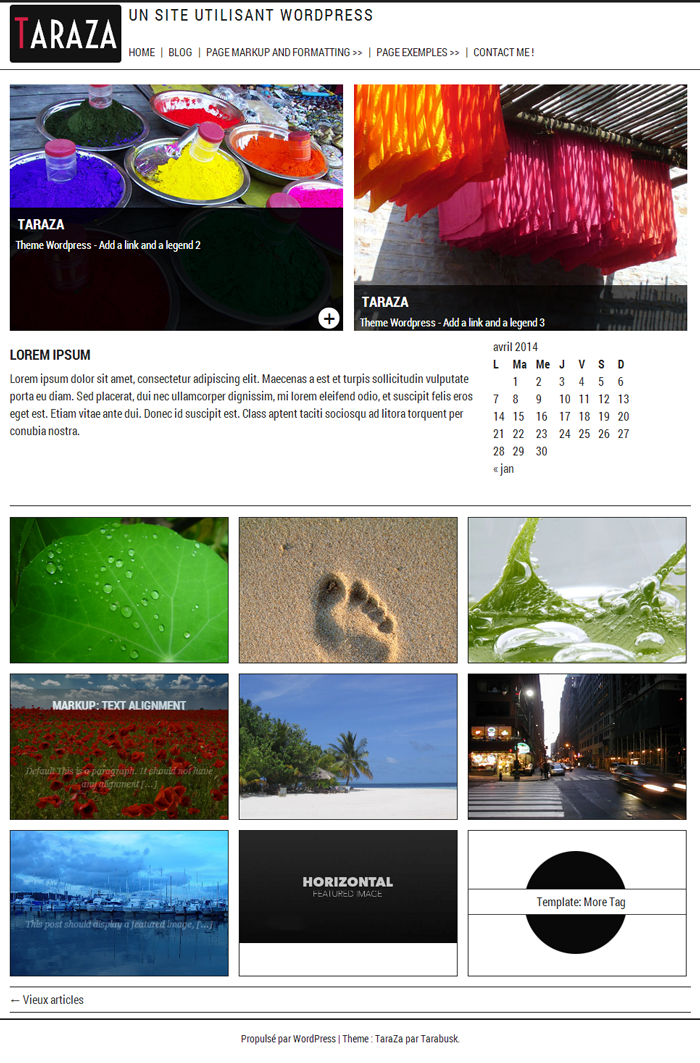 taraza theme Wordpress 2014 Gratuit, simple et sobre